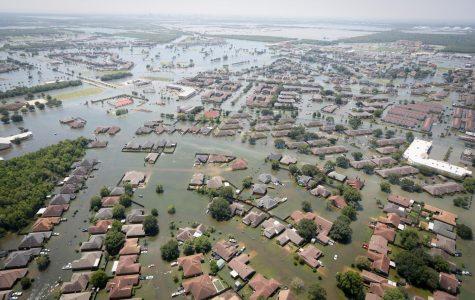 Helpers of Hurricane Harvey