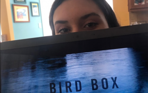 Bird Box: Netflix's new release