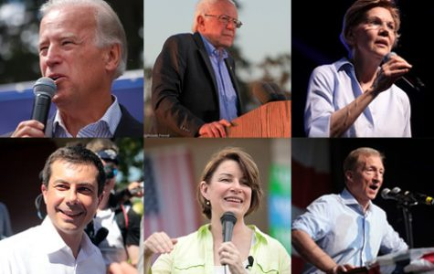 A look at the major Democratic candidates