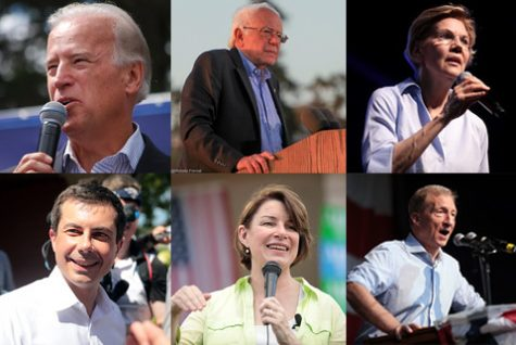 The Democratic candidates