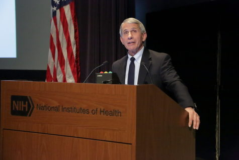 Anthony Fauci, head of the U.S. National Institute of Allergy and Infectious Diseases, giving a statement   Photo from Flickr via Creative Commons